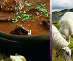 Mutton and Hogget