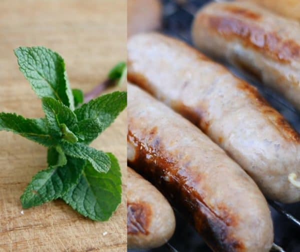 lamb sausage with mint