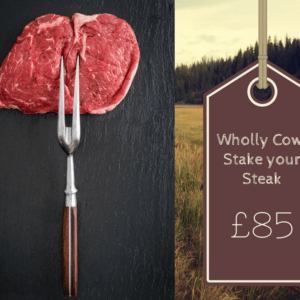 stake your steak